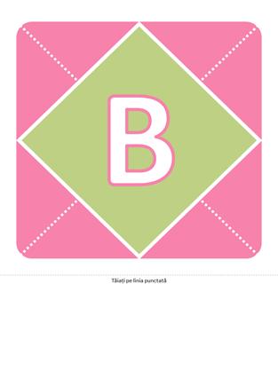 Banner de bun venit unei fetițe nou-născute (roz, violet, verde)