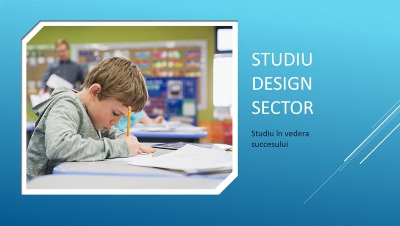Design Sector studiu