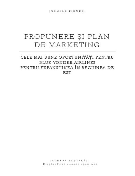 Raport de afaceri (temă elegantă)