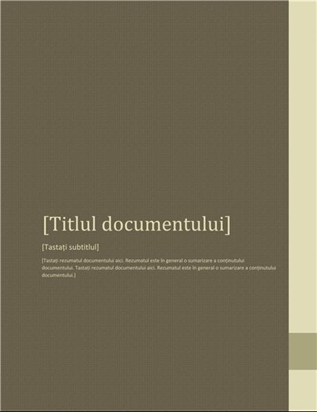 Raport (proiectare Adiacență)