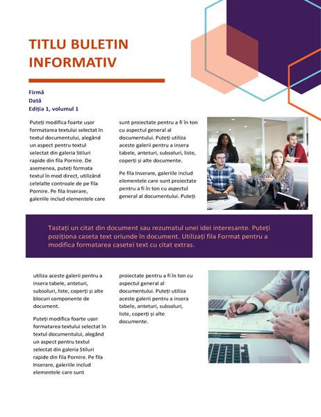 Buletin informativ (proiectare executivă, 2 pagini)