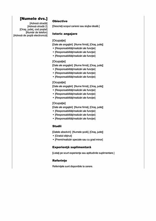 Prezentare personală cronologică (temă verticală)