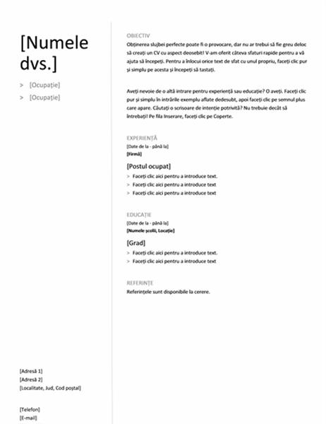 CV cronologic (proiect simplu)