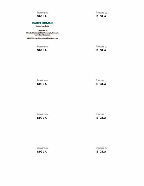 Cărți de vizită, aspect orizontal cu siglă, nume scris cu majuscule