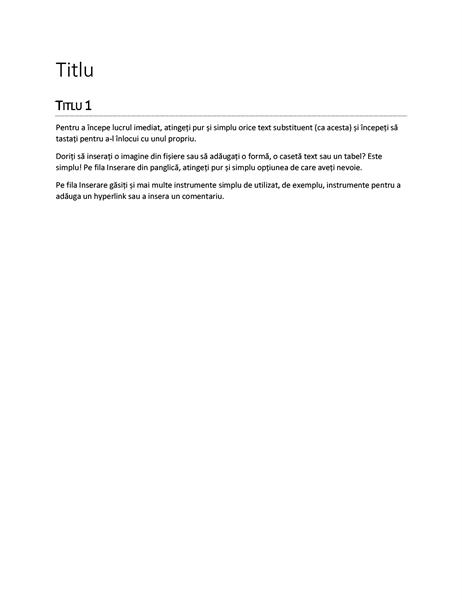 Proiectare Raport (negru)