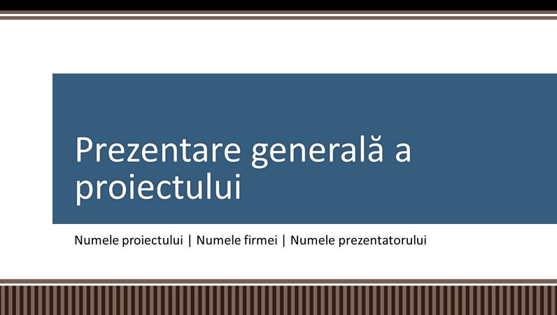 Prezentare generală legată de planificarea proiectelor firmei
