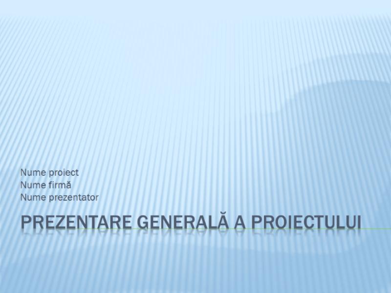 Prezentare generală a unui proiect