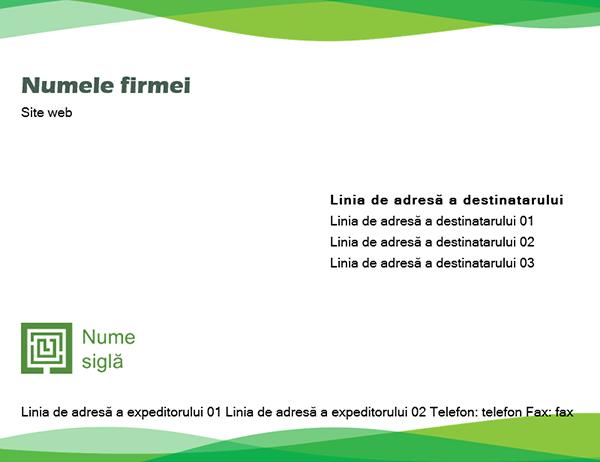Plic (proiectare Val verde)