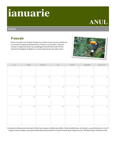 Calendar cu instantanee