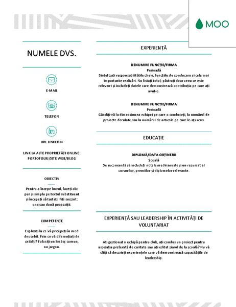 CV creativ, proiectat de MOO
