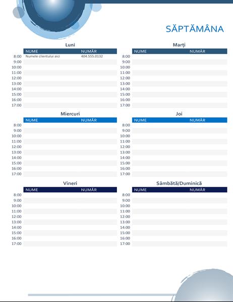 Calendar de rezervări Sfere albastre