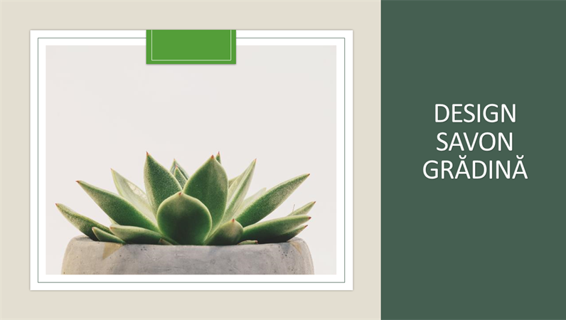 Design Savon grădină