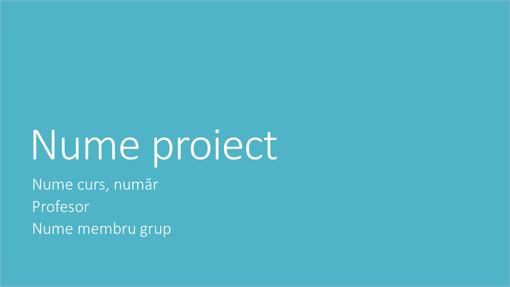 Prezentare pentru proiect de grup (teme Metropolitan, ecran lat)