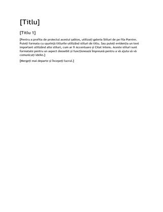 Șablon necompletat, proiect raport