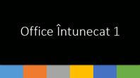 Office Întunecat 1