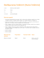 Agendă de întâlnire (proiect portocaliu)