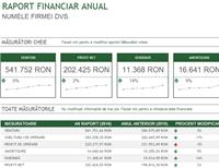 Raport financiar anual
