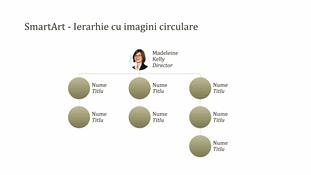 Organigramă cu imagini în cerc (ecran lat)