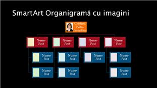 Diapozitiv organigramă cu imagini (multicolor pe negru), ecran lat
