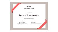 Certificat pentru bursă (bordură albastră oficială)