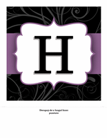 Banner aniversar - Elegant