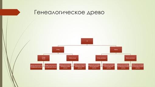 Диаграмма генеалогического древа (вертикальная, красно-зеленая, широкоэкранный формат)