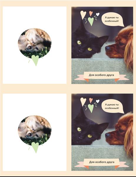 Открытка на любой случай (котята и щенки)