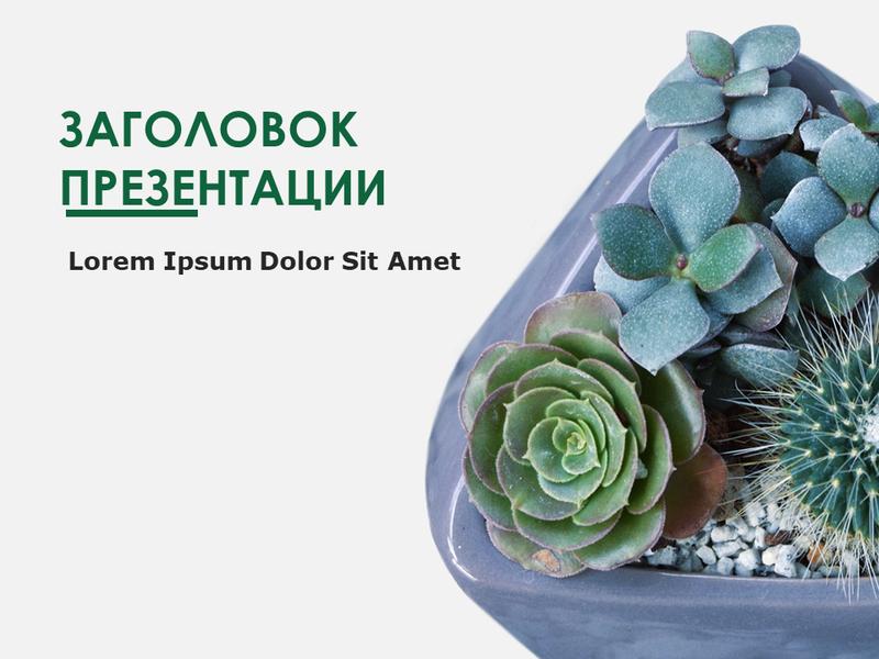 """Слайды с оформлением """"Ботаника"""""""