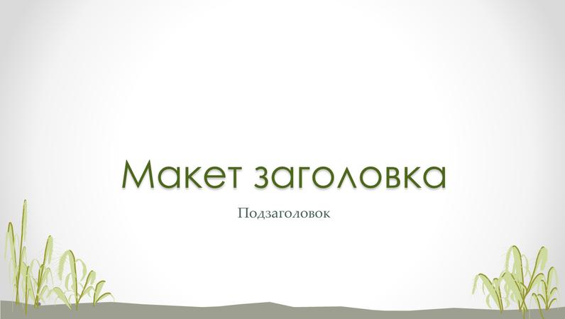 """Слайды с оформлением """"Морской берег"""""""