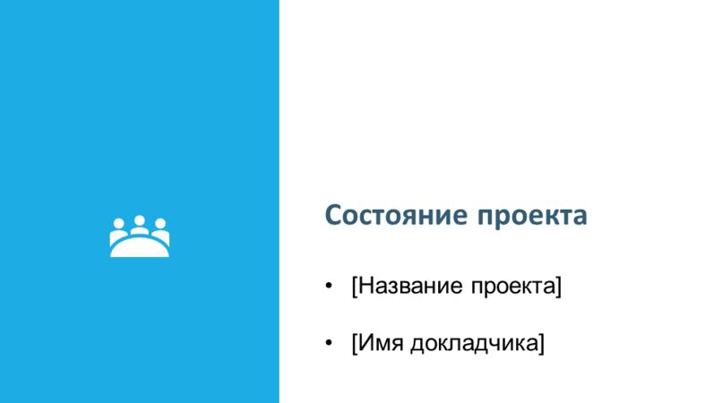 Презентация отчета о состоянии проекта