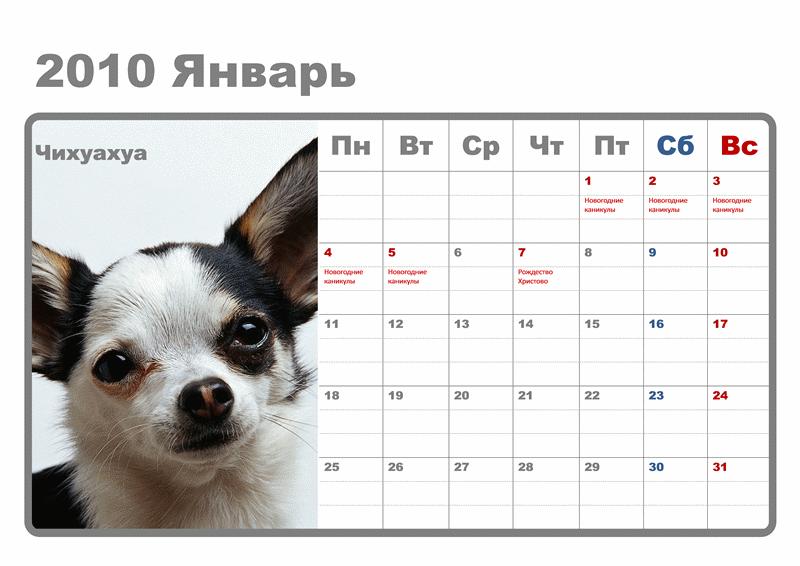 Календарь на 2010 год с собаками (12 стр., с российскими праздниками)
