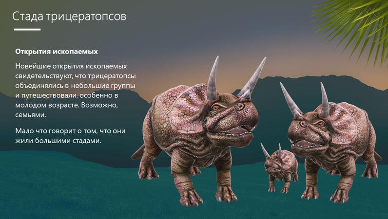 Трицератопс — динозавр с тремя рогами