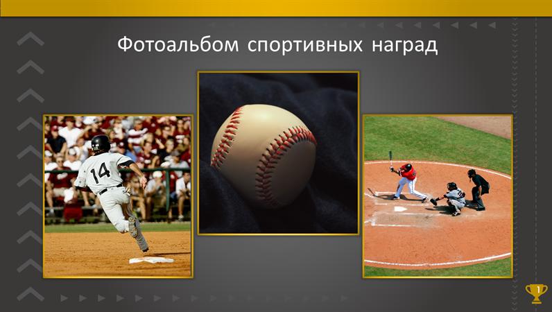 Фотоальбом спортивных наград