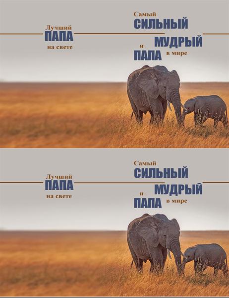 Открытка на День отца с мудрым слоном