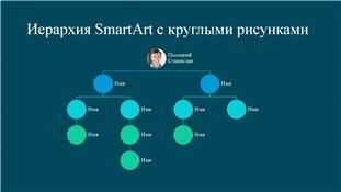 Организационная диаграмма с круглыми изображениями (белое на синем, широкоэкранный формат)