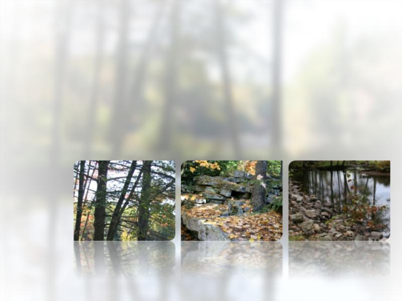 Obrázky s odrazom a rozmazaným pozadím