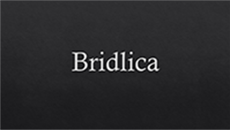 Bridlica