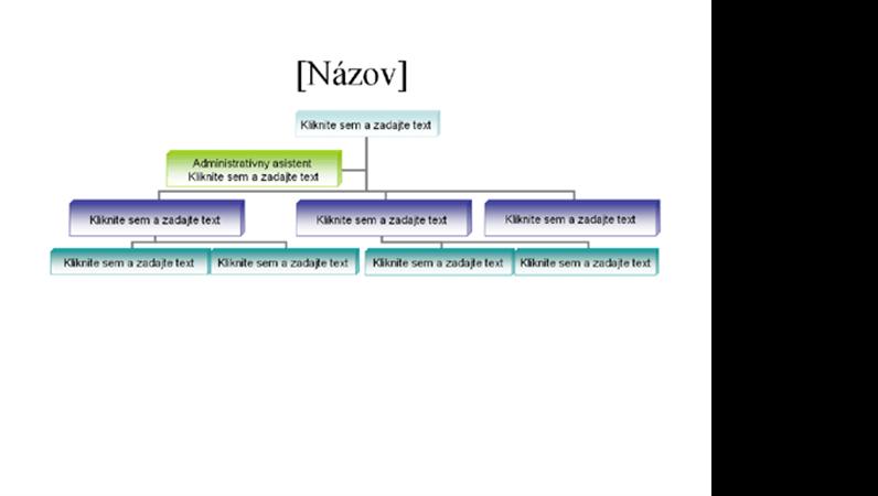 Organizačná schéma