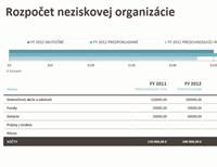 Rozpočet neziskovej organizácie so získavaním prostriedkov