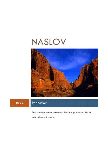 Poslovno poročilo (tema »Sredinsko«)