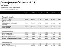 Poročilo o dvanajstmesečnih denarnih tokovih