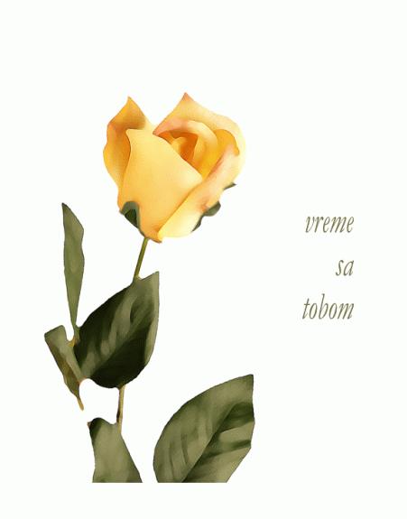 Ljubavna čestitka (sa ružom)