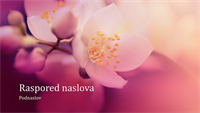 Prezentacija na temu prirode – cvet višnje (široki ekran)
