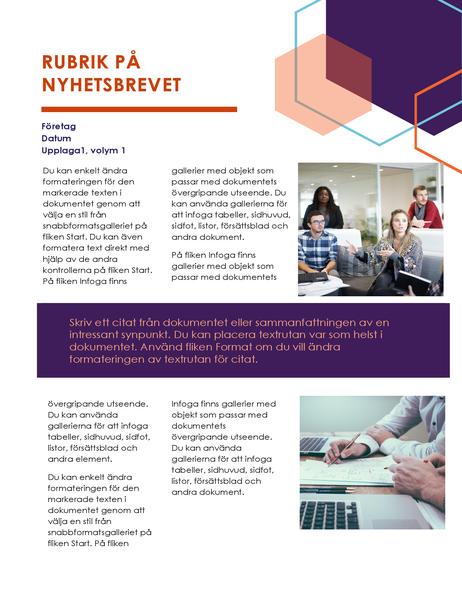 Nyhetsbrev (designen Executive, 2 sidor)