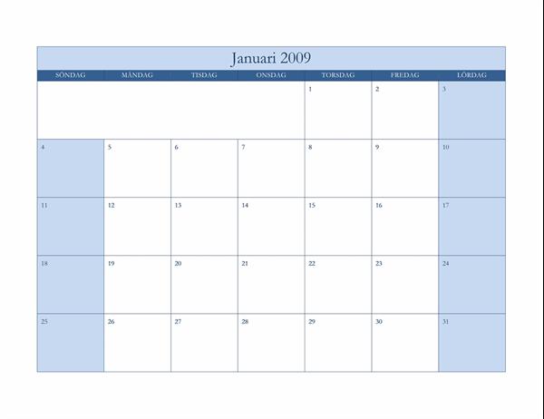 Kalender för 2009 (klassiskt blå)