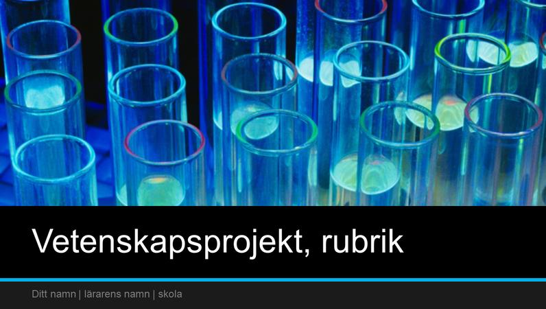 Presentation av vetenskapsprojekt (bredbild)