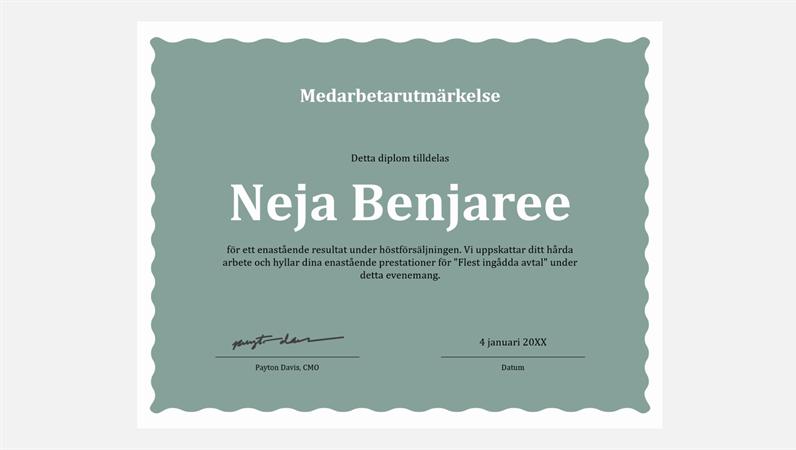 Diplom för medarbetarprestation
