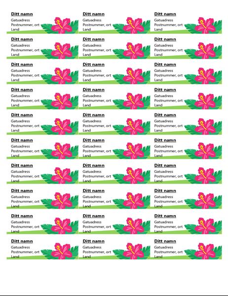 Tropiska etiketter (30 per sida)