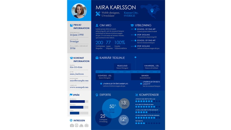 Tidslinje för CV med informationsgrafik