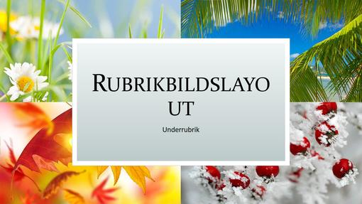 Fyra årstiderna – naturpresentation (bredbild)